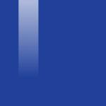 064 BLUE DELICIOUS