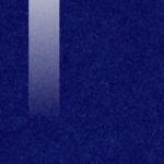 112 BLUE DELICIOUS