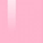 07 LIGHT PINK ROSE